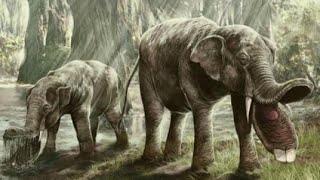 10 Nightmarish Animals you will be Happy are Extinct