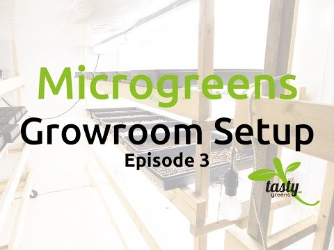 TGNF - Microgreens Growroom Setup Ep:3 Check out our shelving!