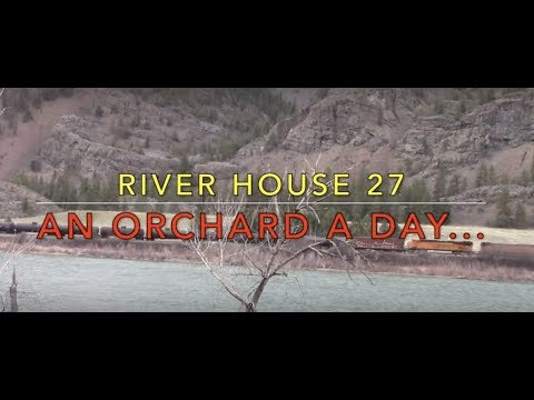 River House 27- An Orchard a Day...