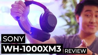 Sony WH-1000X M3 Review After 2 Months - The Best Noise