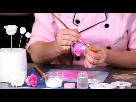 How to Paint a Peony | Sugar Flowers