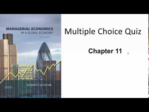 Managerial Economics - Questions & Answers - Chapter 11