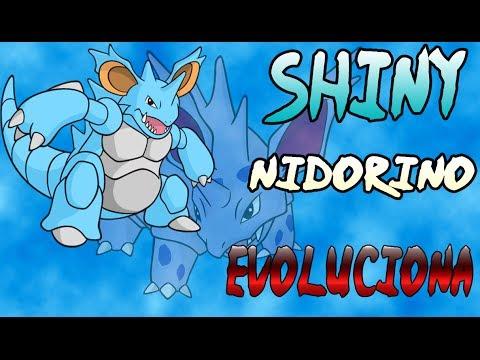Shiny Nidorino Evoluciona a Nidoking Pokémon Y
