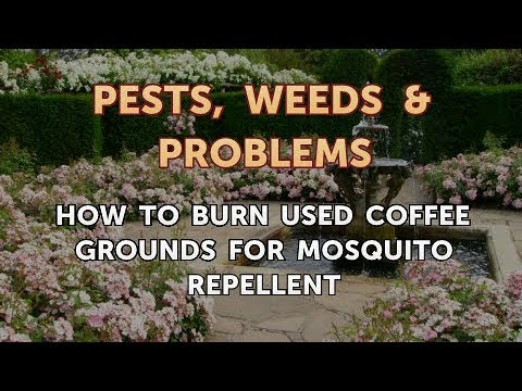 How to Burn Used Coffee Grounds for Mosquito Repellent