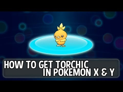 Pokémon X and Y - How To Get Torchic
