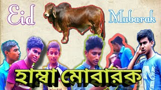 bangladesh qurbani Videos - 9tube tv