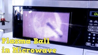 Download Plasma Ball in Microwave Experiment Video