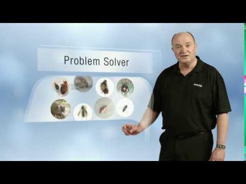 Kiwicare Cockroaches Problem Solver TVC