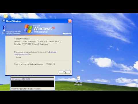 Windows XP running on my VMWare Workstation
