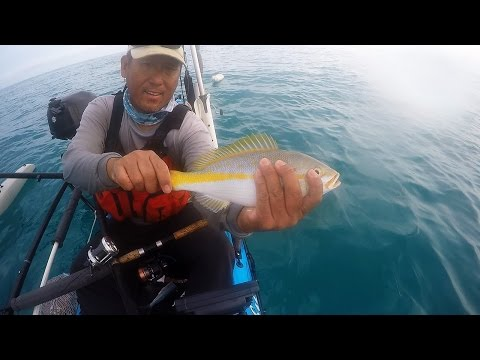 Tackle Tips and Patch Reef Fishing
