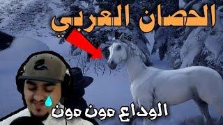 #x202b;ريد ديد 2 الحصان العربي - نجيب أفضل و أسرع حصان مجاني 🐎 | Red Dead Redemption 2 Arabian Horse#x202c;lrm;