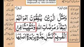 Quran in urdu Surah AL Baqara 002 Ayat 265A Learn Quran translation in Urdu Easy Quran Learning