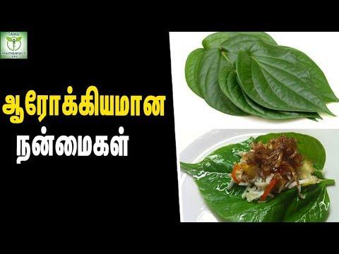 Health Benefits Of Betel Leaf - Healthy foods || Tamil Health Tips