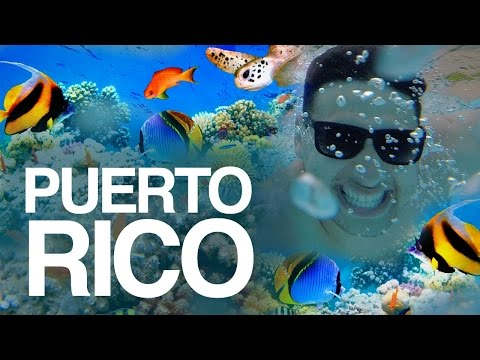 Snorkeling in Puerto Rico   What to do in Puerto Rico?