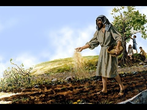 THE SOWER OF SEED