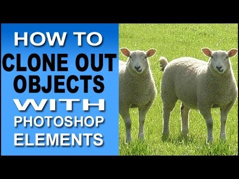 How To Use Photoshop Elements to Clone