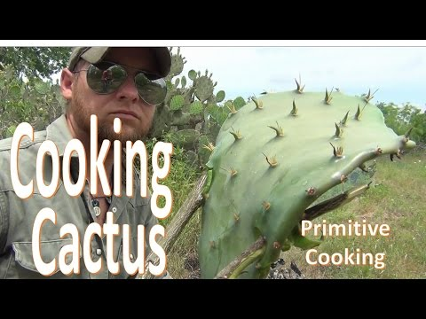 How To Campfire Cook Cactus Pads (Primitive Cooking)
