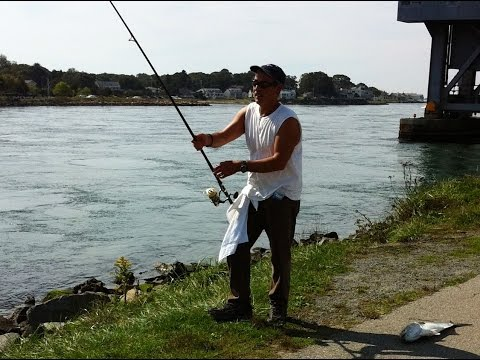striped bass fishing daydreaming about Cape Cod Canal
