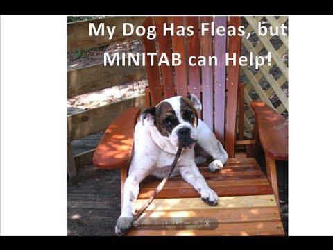 Creating a Binomial Distribution Table using MINITAB