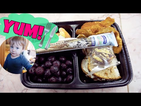 HEALTHY TODDLER LUNCH IDEAS | BABY + TODDLER MEALS