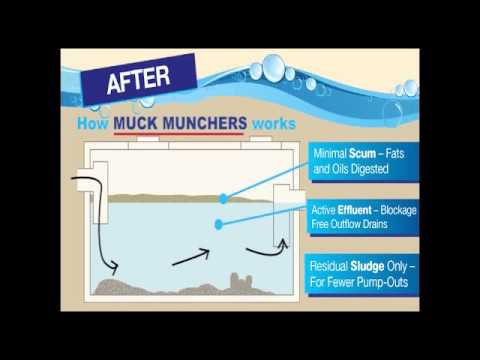 Muck Munchers Septic Tank Treatment