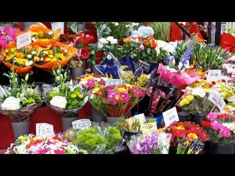 How to Pick Good Flowers from a Bodega | Wedding Flowers