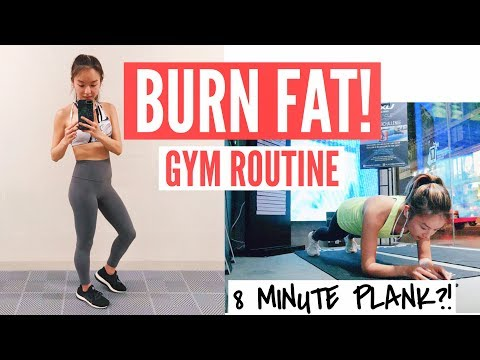 MY FAT BURNING GYM WORKOUT | 8 MINUTE PLANK CHALLENGE?! | Surprise VISITORS! 💕
