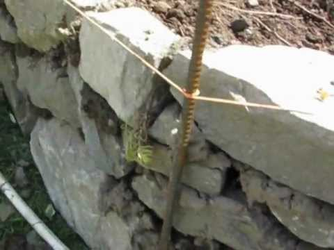Wet Stone Walls!   Some tips on making walls with clay soil as the binder instead of mortar.