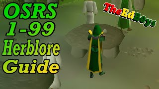 OSRS 1 99 Herblore Guide