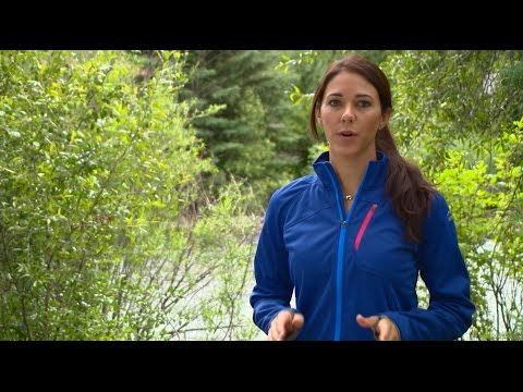 Water Purification: 5 Ways to Clean Water | Camp Cabela's