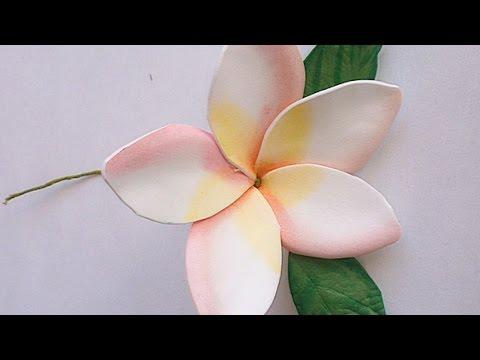 Make a Foam Paper Gentle Plumeria Flower - DIY Crafts - Guidecentral