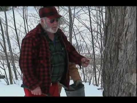 Making Pure Vermont Maple Syrup