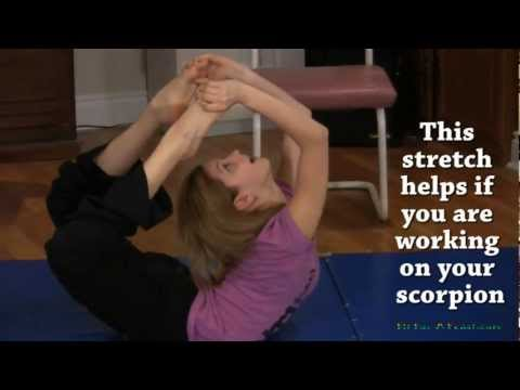 Flexibility Stretches - Upper Body and Back Exercises