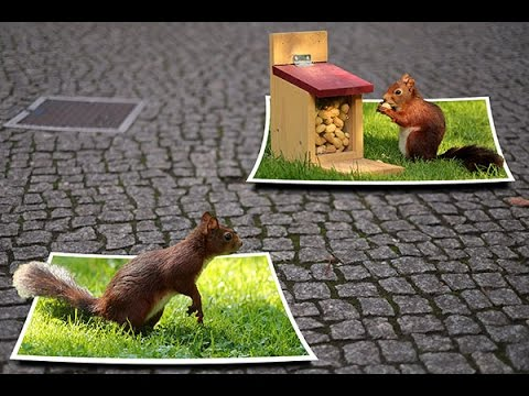 Out of Frame 3D Effects | Multiple Frame | Photo Collage | PhotoShop Tutorial