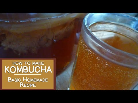 How to Make Kombucha, A Basic Homemade Recipe from Our Kitchen to Yours