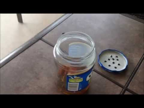 Building a Homemade Fly Trap Out of A Jar