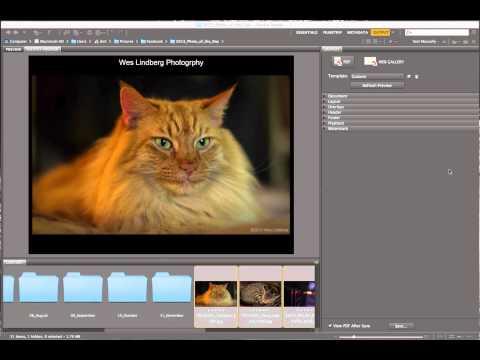 How To - PDF Presentation