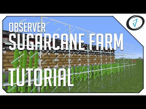 How to build a sugarcane farm in minecraft pe -