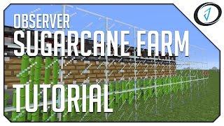 Minecraft 1 11 Observer Block Sugar Cane Farm (WORKING IN
