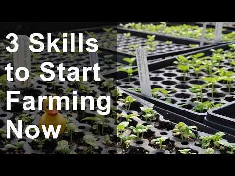 3 Skills to Start Farming Now