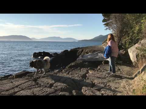 Exploring RV Campgrounds in Anacortes Washington