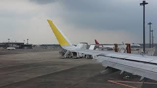 Cebu Pacific Flight Narita to Manila
