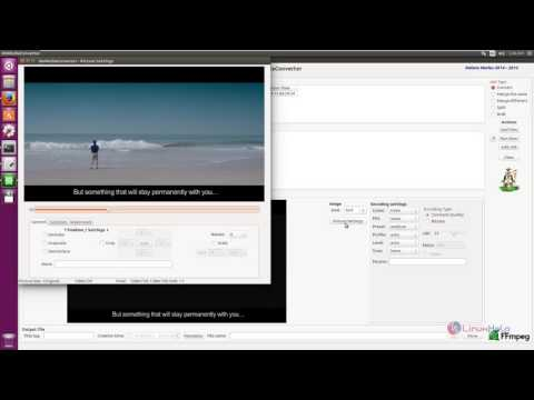 How to install dmMediaConverter in Ubuntu