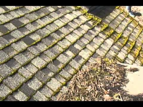 Copper / Zinc Strips Failure - Roof Life of Oregon -