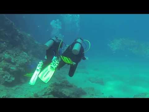 Black Rock - Best Shore Dives Maui, Hawaii
