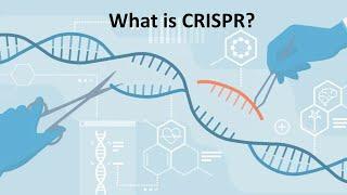 Quick learning of CRISPR/Cas9