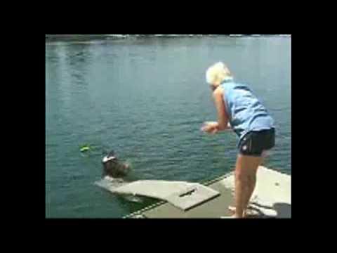 Doggie Dock