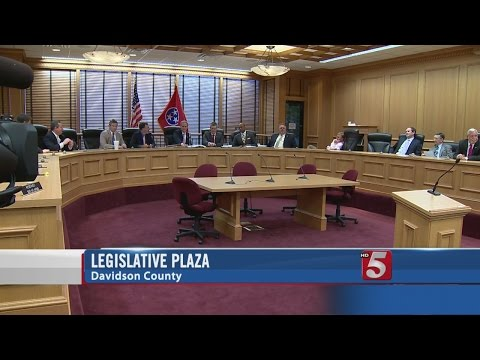 Special Committee Strips Capitol Complex From Gun Bill