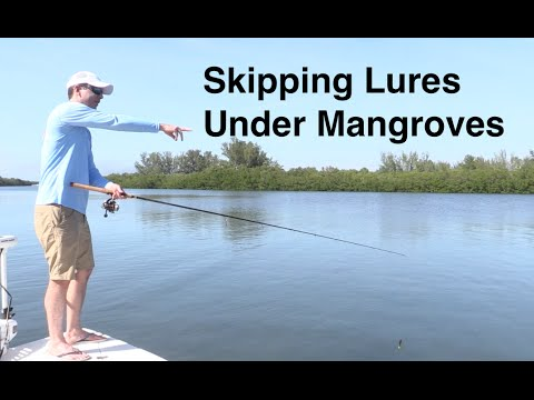 How to Skip a Lure under Mangroves - Casting Tips
