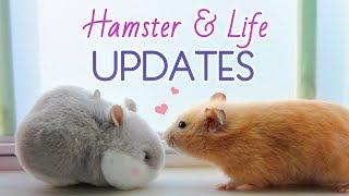 🌱 NATURAL Hamster Cage Theme!,EZ850 - VideosTube